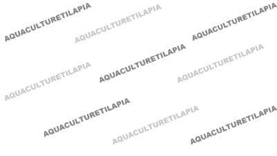 Aquaculturetilapia Place Holder
